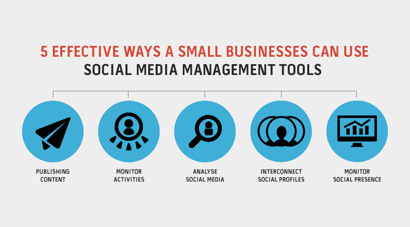 social media management for business